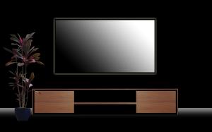 tv1-1